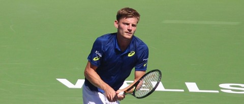 David Goffin Tennis News